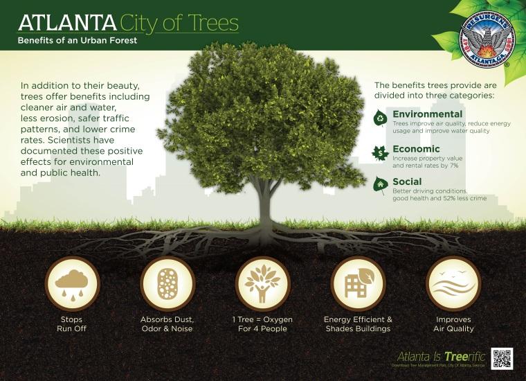 Downtown Tree Inventory Atlanta Ga