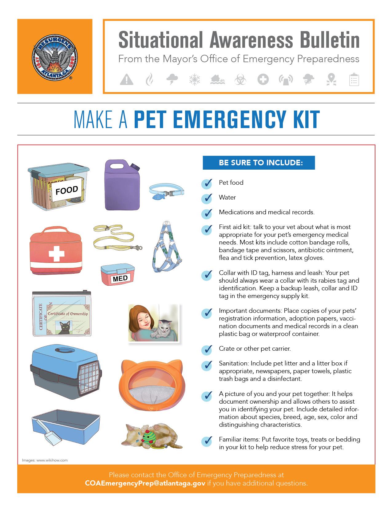 Making a Pet Emergency Kit