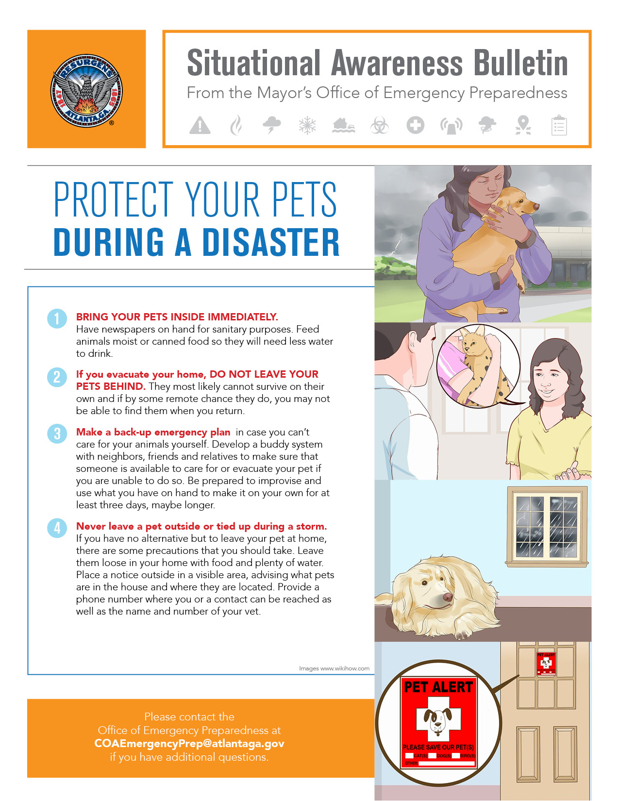 Protecting Your Pet During a Disaster